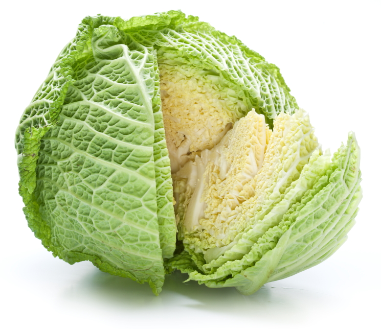 "Cabbage ""Curly"""